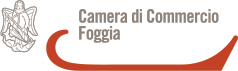 cameracommercio.png